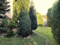Prodej domu v osobním vlastnictví 336 m², Kyselka
