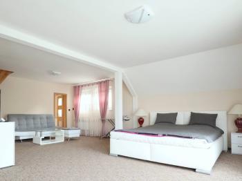 Prodej domu v osobním vlastnictví 350 m², Karlovy Vary